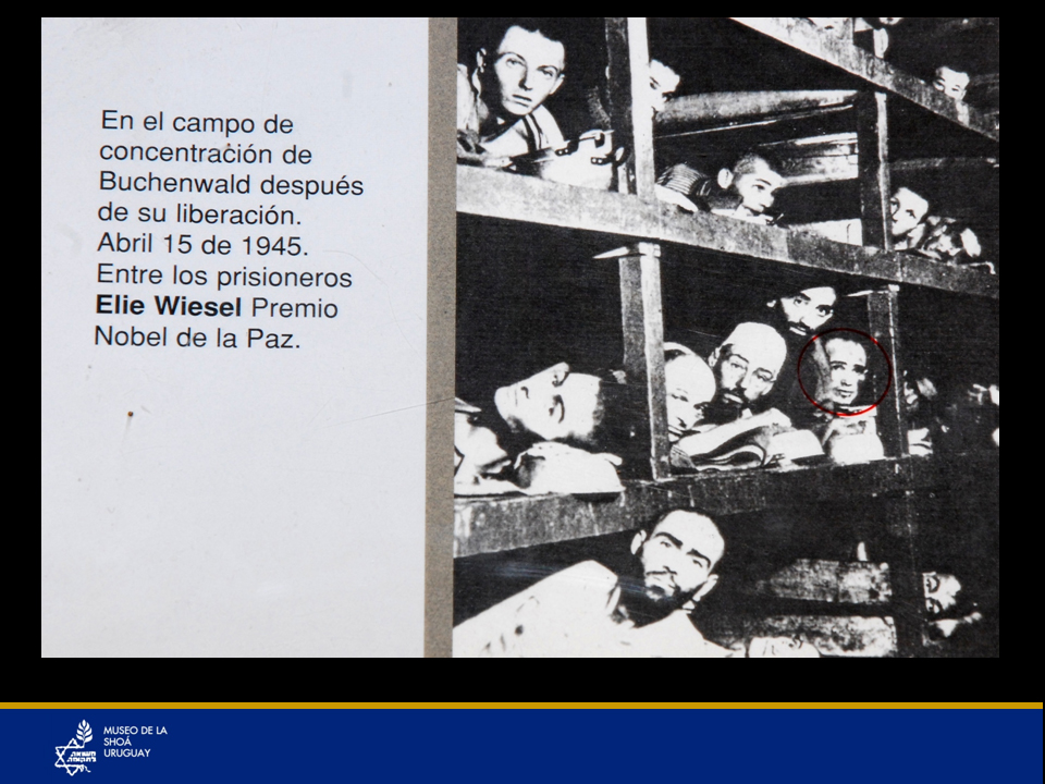 Campo de concentración de Buchenwald después de su liberación, 15 de abril de 1945. Entre los prisioneros se encuentra Elie Wiesel, Premio Nobel de la Paz. Es importante destacar una presencia muy especial en el museo, la de Elie Wiesel (señalada con un círculo rojo), premio Nobel de la Paz 1986. Gran activista en conservar la memoria de la Shoá y en pro de los Derechos Humanos, vino a Uruguay en el año 1990 por pocas horas y una de sus pocas actividades fue visitar al Museo de la Shoá y conversar con sobrevivientes.