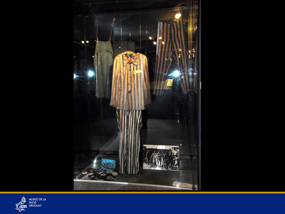 """Un traje de internado de Auschwitz y su historiaTraje de prisionero, ¿""""prisionero"""" de qué? ¿por cuál delito? Cuánto les dolía se les refiriese como prisioneros...Ide Taube -que era de la ciudad de Turek, cerca de la ciudad más importante de Poznan -trabajó en Auschwitz - Birkenau, le dieron el Nº 144431. Tiene además del número un triángulo rojo con una banda amarilla arriba de dicho triángulo, lo que significaba que era judío y podía recibir el peor trato, podían ser asesinados dentro del campo, sin ningún castigo por hacerlo.Trabajó en una fábrica de benzina sintética, IG.FARBERAI, durante 3 años.Muy pocos prisioneros resistieron tanto tiempo en este campo.Se salvó milagrosamente y ese traje corrió su suerte.Miles de prisioneros fueron llevados por los nazis a las Marchas de la Muerte, las cuales se refieren al movimiento forzoso realizado entre el otoño de 1944 y fines de abril de 1945 por la Alemania Nazi de miles de prisioneros, en su mayoría judíos, desde los campos de concentración alemanes cerca del frente de guerra a los campos al interior de Alemania. Pocos llegaron con vida. A los que no podían caminar los asesinaban. También estaban los que eran ya como fantasmas, se los llamaba """"musulmanes"""". Ide Taube estaba entre ellos; ya no podía caminar. Pero lo dejaron junto a otras 3 o 4 personas que no podían casi moverse y como no se sabía cuándo llegarían los rusos, los dejaron a su suerte pensando morirían de hambre, sin necesidad de exterminarlos.Pero a los 2 días llegaron los rusos, les dieron de comer a estas 4 personas y salvo Ide Taube, los demás murieron puesto que los demás se abalanzaron sobre la comida, que era muy inapropiada para personas que casi no se habían alimentado por años y que no estaban acostumbrados a estar saciados hasta el hartazgo. Sus entrañas no lo resistieron. En cambio Ide Taube comió sólo puré de papas y nada más durante días. Eso lo salvó. Los internados generalmente tiraban sus trajes, sucios, llenos de insectos, de piojos, pero"""