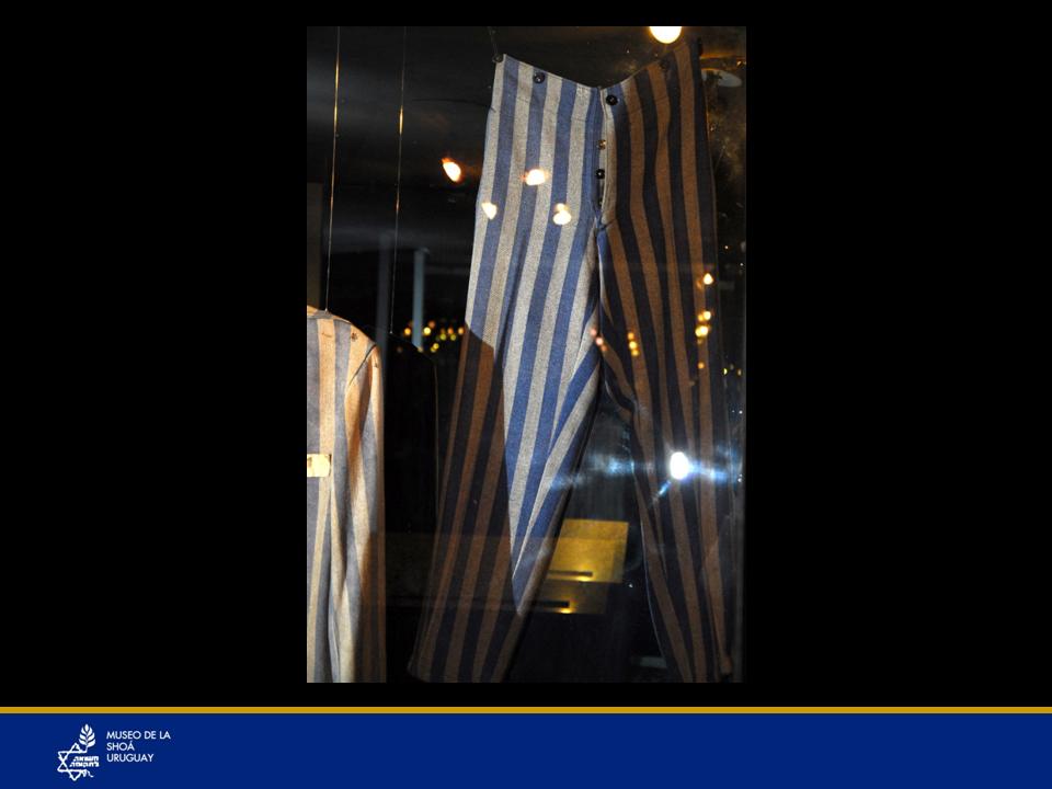 Pantalón de campo de concentración perteneciente a Scholem DuschitzDonación de Sara Levitas de Duschitz.Scholem Duschitz, lituano de nacimiento, es deportado del ghetto Sladovka al Campo de Concentración del Comando Kaufering-Landsberg, ubicado en el Distrito de Landsberg a 65 kms. de Munich. El Campo funcionó entre 1943 y 1945 como sub-unidad del Campo Dachau. Sholem salvó su vida, debido a su estatura alta para un niño de doce años, condición satisfactoria para realizar trabajos forzados. Llegó a Uruguay junto a su hermano mayor gracias a los esfuerzos de parientes radicados en este país. Siempre cuidaba y lavaba este pantalón hasta su fallecimiento.Scholem Duschitz Pupkin. Testimonio escrito por él.Mi nombre es Scholem Duschitz Pupkin. Nací en Kaunas, Lituania, el 05-05-1927, pero en realidad en 1930, ya que declare esa fecha para no ser deportado al crematorio con los niños, y simulé ser mayor en aquel entonces. Vivíamos con mi familia en Gardino Gatve Nº53 y mi familia estaba compuesta por mi padre, nacido en Vilna, el cual murió en Lituania, cuando lo sacaron con los niños hacia el crematorio, mi madre Ana Pupkin, la cual fue bajada en Stuthoff y jamás la volví a ver, mis hermanos Jacobo y Iosef, este último casado y con una hija de tres años, quien fue asesinado por el solo hecho de ser judío. Vivíamos todos juntos hasta el año 1940.Luego nos llevaron a todos al Ghetto lituano de Sladovka, cuando se retiraron los rusos y entraron los alemanes. El ghetto estaba en Kaunas, en el barrio de Slabotka, donde estuvimos con mi hermano Jacobo, hasta el año 1943.Ese año nos sacaron en vagones para llevarnos al campo de concentración de Landsberg Amlej. Trabajamos para Moll, había hangares de aviones, con cemento, piedras, tablas. Mi hermano perdió dedos de su mano, cargando pesadas barras de hielo.Después salimos del campo dirigiéndonos hasta el Tirol a pie durante una semana, hasta que el día 2 de mayo de 1945, al levantarnos nos percatamos que no había ejército, ya q